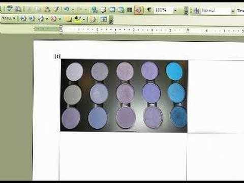 MSWORD for Palette Labeling