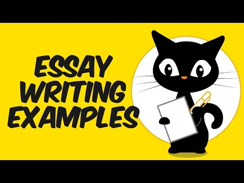 Essay Writing Examples