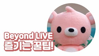 Beyond LIVE 즐기는 꿀팁! SPECIAL tips to enjoy Beyond LIVE! (feat. #NCT127)