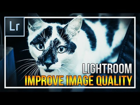 How To Improve Image Quality in Lightroom [EASY]