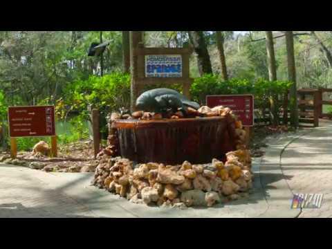Ellie Schiller WildLife Park Homosassa Springs FL