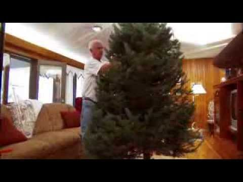Santa's Solution Tree Stands: Made for a lifetime!