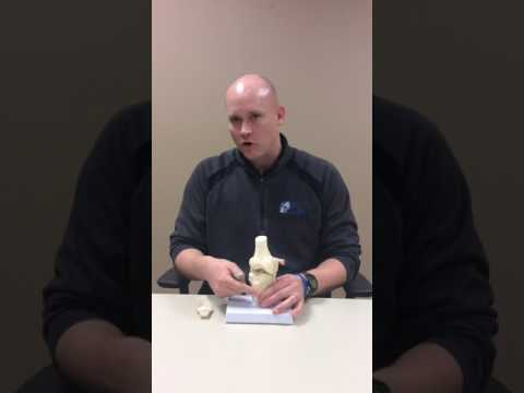 Osgood Schlatter Disease as explained by Ted Kruse, DPT.