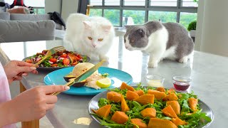 Can Cats Resist Human Food?