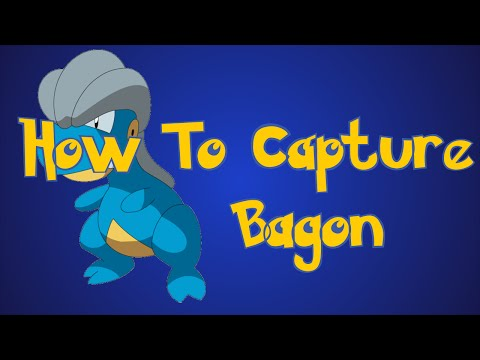 Pokemon Omega Ruby and Alpha Sapphire Tips: How To Capture Bagon