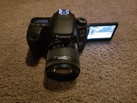 Trying out the new camera. DSLR.