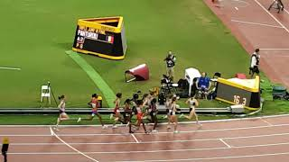 Womens 1500m final - world athletics championships doha 2019