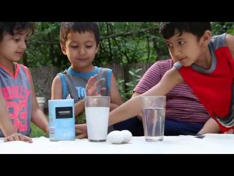 Egg Experiment By little Kids