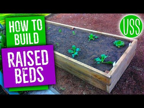 How To Build Raised Garden Beds
