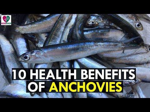 10 Amazing Health Benefits of Anchovies