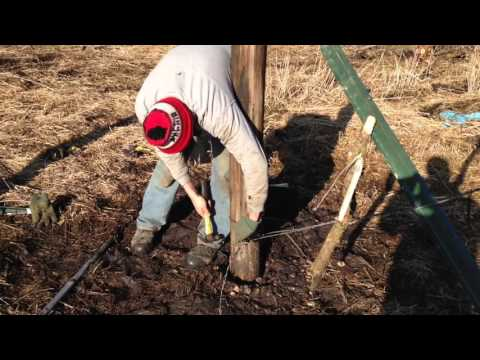 How to Build a Barbed Wire Fence in 10 Easy Steps (farmcards)