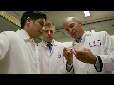 Biomaterials at NYU Dentistry