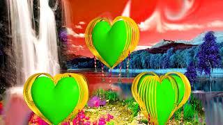 Backgrounds wedding green screen effects | effects