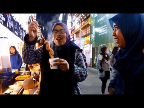 (Halal Travel Korea) Through My Lens - Trip Adik Beradik