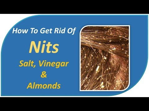 how to get rid of nits - Salt, Vinegar & Almonds