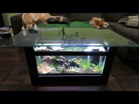 How I Made It: Break-Down of My Coffee Table Aquarium