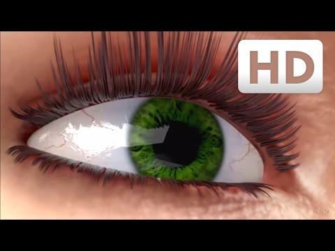 How eyelashes grow - Nanolash® eyelash serum Explainer Video