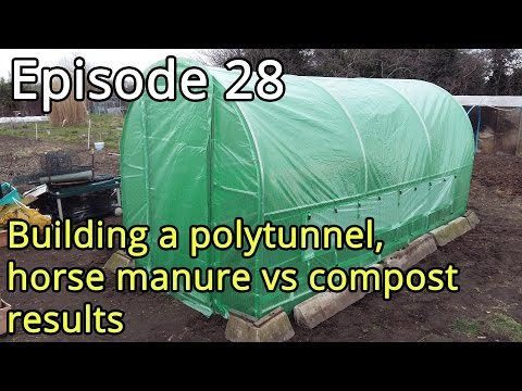 Episode 28   Building a polytunnel, horse manure vs compost results