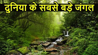दुनिया के सबसे बड़े जंगल | Top 10 Largest and DANGEROUS Forest in World