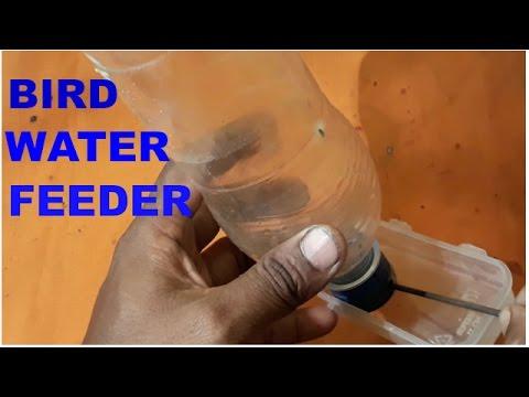 How to make a Bird water Feeder.Homemade  Bird water Feeder