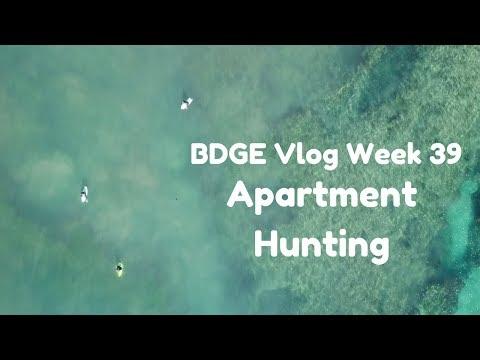 Apartment Hunting in San Diego!  | Week 39 BDGE Vlog