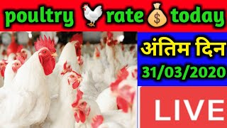 [ 31-03-2020 ] महीने के अंतिम दिन बड़ा बदलाव | wholesale latest poultry rate today and egg rates