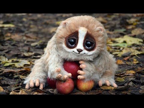 Милые забавные животные. Animals the best video