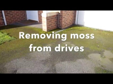 How to remove moss on drives and patios with natural products and minimal effort