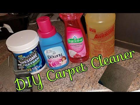 DIY Carpet Cleaner |Dollar tree edition!