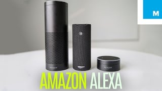Amazon Echo Dot  Tap Which Alexa Device Is For You  Plugged In