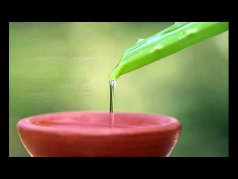 Home Remedy Aloe Vera And Associates Helps To Treat Flaky Scalp In Best Way
