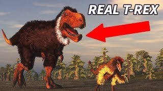 LIES About Dinosaurs You PROBABLY Still Believe!