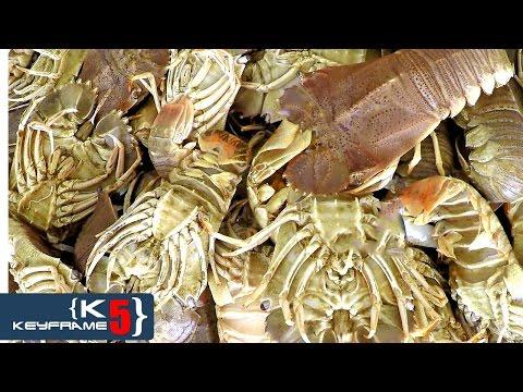 BEST THAILAND SEAFOOD & THAI FISH MARKET | FRESH LOBSTERS