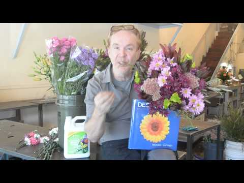 How to Make Flowers Last for Weeks