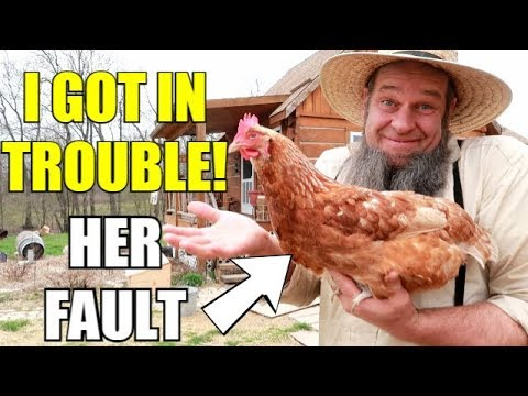 CHICKENS GOT ME IN TROUBLE!