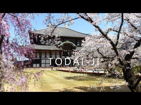 Japan, Nara - Todai-ji (2018)