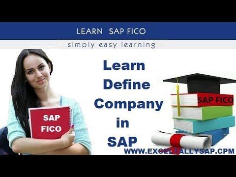 Define Company in SAP in Hindi