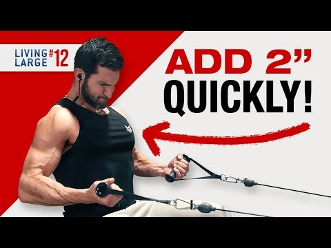 BEST Chest and Back Workout FOR MASS! (GIANT SETS FOR GIANT GAINS!)
