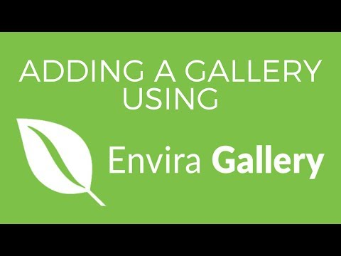 Adding a Gallery to Your Site with Envira Gallery (Featured Plugin)