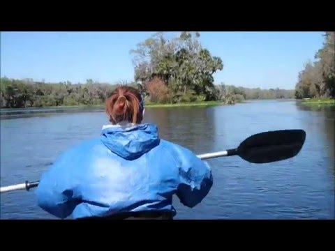 Wekiva River... Buffalo Tram to Katies Landing... Day 2 of 2