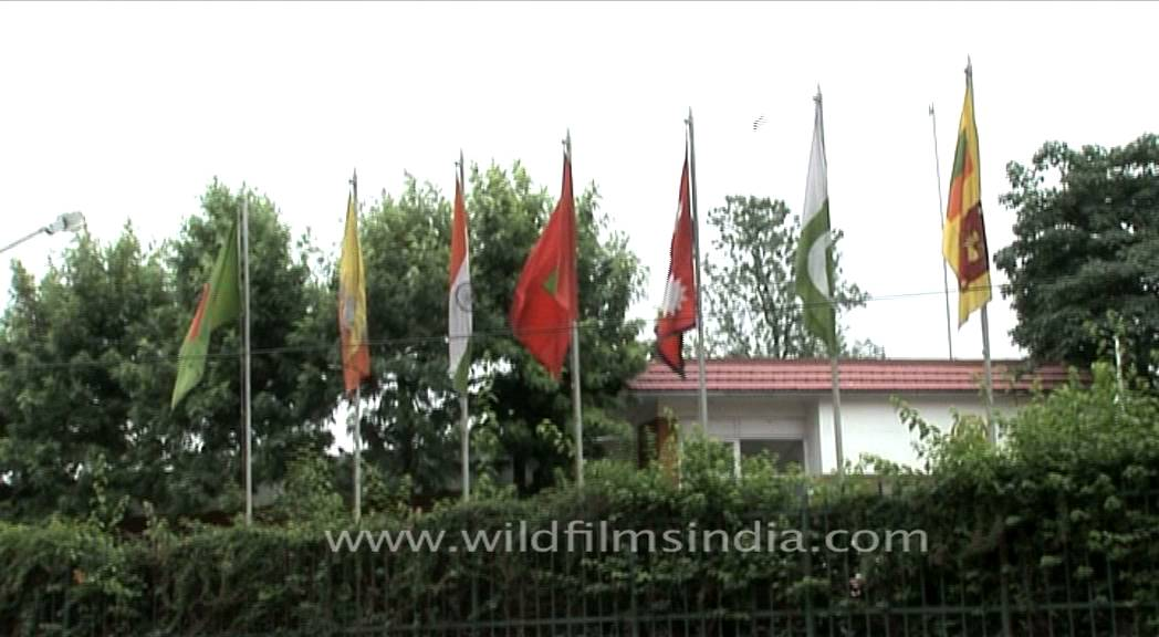 Flags of SAARC in Nepal