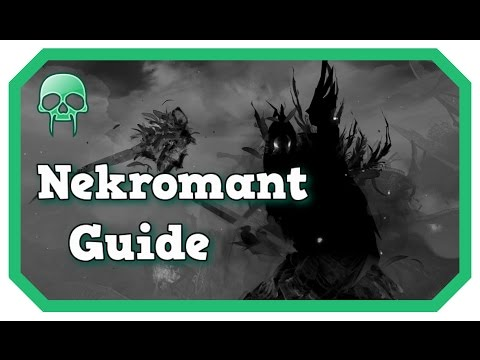 Power Nekromant Guide für PvP | Guild Wars 2