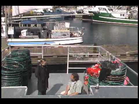 How to buy sustainable seafood III right off the dock