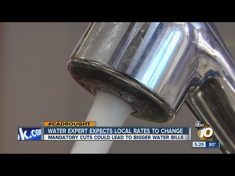 Water expert expects local water rates to change