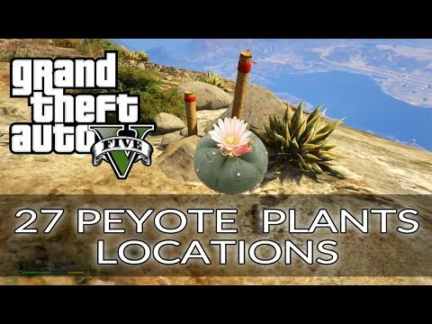 GTA 5 All 27 Peyote Plant Locations - Play as Animals - Cryptozoologist trophy \ achievement