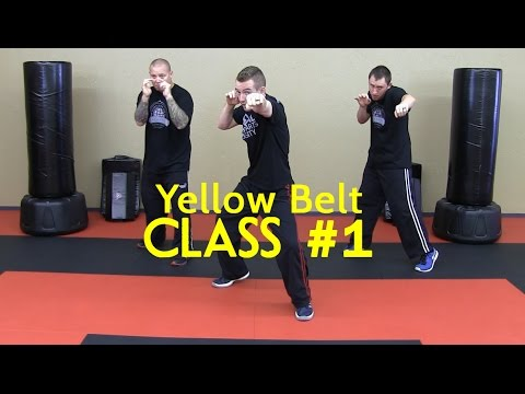 Beginner Krav Maga - Yellow Belt/Level 1 - Class #1 (Warm Up, Follow Along Drills)