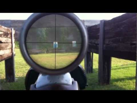 Ruger 10/22 100 Yard yd. Range Scope Video