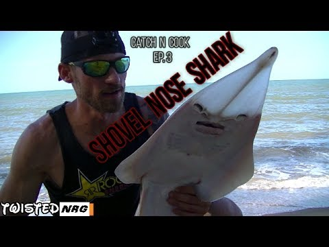 Shovel Nose Shark Catch n Cook! Marinated and Shallow Fried