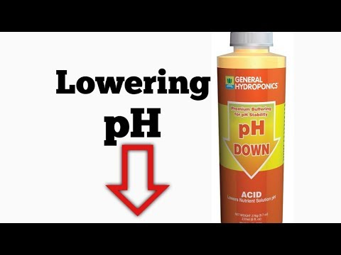 Lowering pH in Aquapoincs!