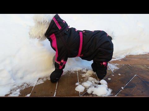 Puppy Wearz New Product Pet Outerwear Snowsuit/Onesie
